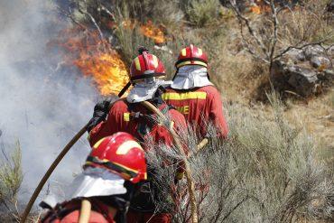 El avance contra el fuego. Foto: UME.