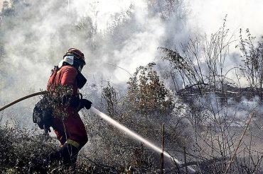 Apagando el fuego en Pedrogrâo (Portugal): Foto: UME.