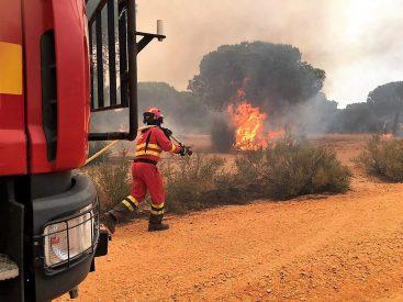 Actuación en el incendio del entorno de Doñana. Foto: UME.