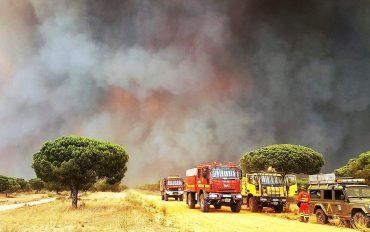 La zona del entorno de Doñana. Foto: UME.